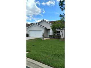 1719 Lake Heron Drive, Lutz, FL 33549 (MLS #T2878215) :: The Duncan Duo & Associates