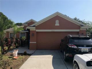 15423 Montilla Loop, Tampa, FL 33625 (MLS #T2878269) :: The Duncan Duo & Associates