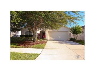 15448 Osprey Glen Drive, Lithia, FL 33547 (MLS #T2878882) :: The Duncan Duo & Associates
