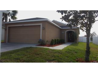 7020 Forest Mere Drive, Riverview, FL 33578 (MLS #T2879091) :: The Duncan Duo & Associates