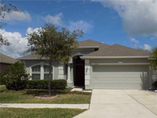 6432 Doe Path Court, Wesley Chapel, FL 33545 (MLS #T2879584) :: The Duncan Duo & Associates