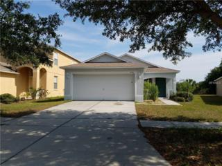 8561 Deer Chase Drive, Riverview, FL 33578 (MLS #T2879679) :: The Duncan Duo & Associates