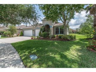 16305 Bridgelawn Avenue, Lithia, FL 33547 (MLS #T2879781) :: The Duncan Duo & Associates