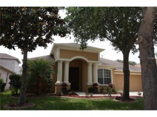 12505 Burgess Hill Drive, Riverview, FL 33579 (MLS #T2881519) :: The Duncan Duo & Associates