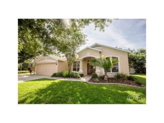15127 Heronglen Drive, Lithia, FL 33547 (MLS #T2881836) :: The Duncan Duo & Associates