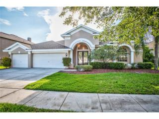 4332 Waterford Landing Drive, Lutz, FL 33558 (MLS #T2882088) :: The Duncan Duo & Associates