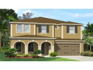 4567 Pensford Court, Wesley Chapel, FL 33543 (MLS #T2882105) :: The Duncan Duo & Associates