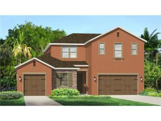 31916 Bourneville Terrace, Wesley Chapel, FL 33543 (MLS #T2882111) :: The Duncan Duo & Associates