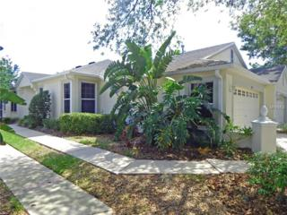5823 Phoebenest Drive, Lithia, FL 33547 (MLS #T2882318) :: The Duncan Duo & Associates