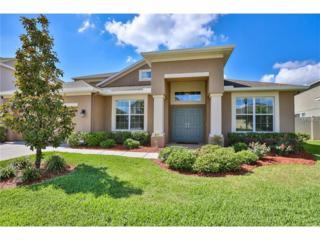 10722 Breaking Rocks Drive, Tampa, FL 33647 (MLS #T2882475) :: Rutherford Realty Group   Keller Williams