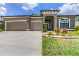 15664 Starling Water Drive, Lithia, FL 33547 (MLS #T2882511) :: The Duncan Duo & Associates