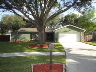 4904 Crockett Court, Tampa, FL 33625 (MLS #T2882677) :: The Duncan Duo & Associates