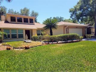 14203 Ashburn Place, Tampa, FL 33624 (MLS #T2882690) :: The Duncan Duo & Associates