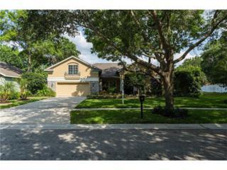 5624 Osprey Park Place, Lithia, FL 33547 (MLS #T2882763) :: The Duncan Duo & Associates