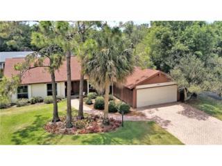11511 Areca Road, Tampa, FL 33618 (MLS #T2882966) :: The Duncan Duo & Associates