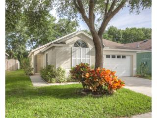 6011 Kiteridge Drive, Lithia, FL 33547 (MLS #T2883039) :: The Duncan Duo & Associates