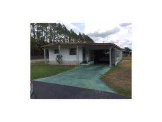 3450 Osage Drive, Zephyrhills, FL 33541 (MLS #T2883071) :: The Duncan Duo & Associates