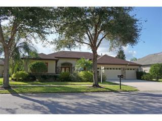 15720 Ibisridge Drive, Lithia, FL 33547 (MLS #T2883212) :: The Duncan Duo & Associates