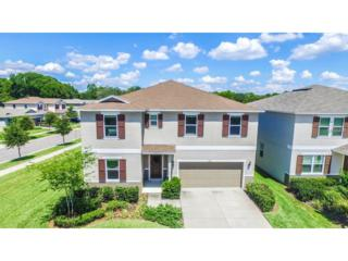 1102 Lake Highview Lane, Brandon, FL 33510 (MLS #T2883264) :: The Duncan Duo & Associates