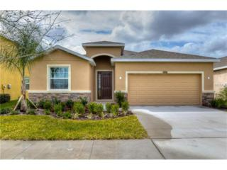 11519 Storywood Drive, Riverview, FL 33578 (MLS #T2883355) :: The Duncan Duo & Associates