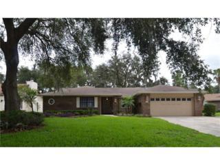 1805 Tanstone Place, Brandon, FL 33510 (MLS #T2883392) :: The Duncan Duo & Associates