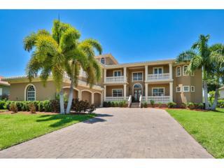 6459 Rubia Circle, Apollo Beach, FL 33572 (MLS #T2883481) :: The Duncan Duo & Associates