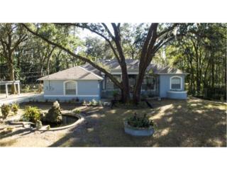 3404 Crenshaw Lake Road, Lutz, FL 33548 (MLS #U7801516) :: The Duncan Duo & Associates