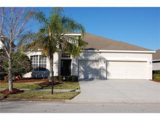 6955 Runner Oak Drive, Wesley Chapel, FL 33545 (MLS #U7808158) :: The Duncan Duo & Associates