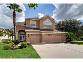 9601 Greenpointe Drive, Tampa, FL 33626 (MLS #U7809124) :: The Duncan Duo & Associates