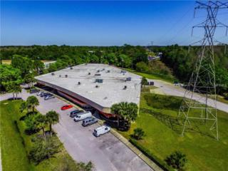14103 Mccormick Drive, Tampa, FL 33626 (MLS #U7811001) :: The Duncan Duo & Associates