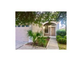 8564 Deer Chase Drive, Riverview, FL 33578 (MLS #U7817961) :: The Duncan Duo & Associates