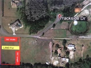 15812 Trackside Drive, Odessa, FL 33556 (MLS #U7819813) :: NewHomePrograms.com LLC