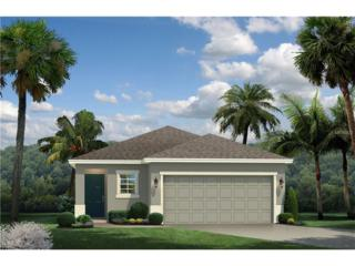 11162 Spring Point Circle, Riverview, FL 33579 (MLS #W7625393) :: The Duncan Duo & Associates