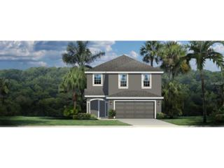 11146 Spring Pointe Circle, Riverview, FL 33579 (MLS #W7625578) :: The Duncan Duo & Associates