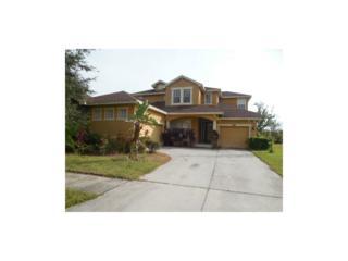 8748 Handel Loop, Land O Lakes, FL 34637 (MLS #W7625608) :: The Duncan Duo & Associates