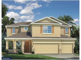 12210 Morgans Bluff Place, Riverview, FL 33579 (MLS #W7625750) :: The Duncan Duo & Associates