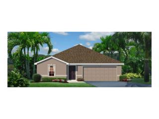 14125 Poke Ridge Drive, Riverview, FL 33579 (MLS #W7627040) :: The Duncan Duo & Associates