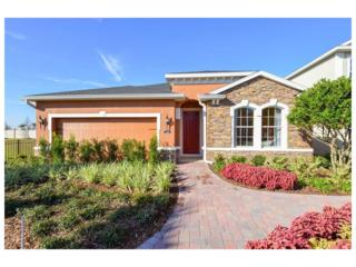 14123 Poke Ridge Drive, Riverview, FL 33579 (MLS #W7627185) :: The Duncan Duo & Associates