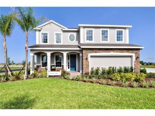 14117 Poke Ridge Drive, Riverview, FL 33579 (MLS #W7627190) :: The Duncan Duo & Associates
