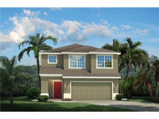 11345 Hudson Hills Lane, Riverview, FL 33579 (MLS #W7627234) :: The Duncan Duo & Associates