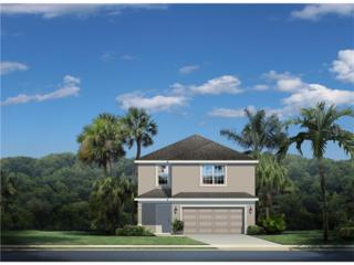 11347 Hudson Hills Lane, Riverview, FL 33579 (MLS #W7627235) :: The Duncan Duo & Associates