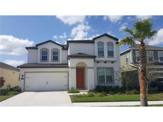 11135 Spring Point Circle, Riverview, FL 33579 (MLS #W7629140) :: The Duncan Duo & Associates
