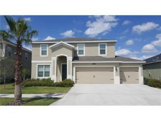 12208 Dusty Miller Place, Riverview, FL 33579 (MLS #W7629141) :: The Duncan Duo & Associates