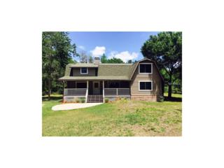 17231 Eagle Lane, Lutz, FL 33558 (MLS #W7629238) :: The Duncan Duo & Associates