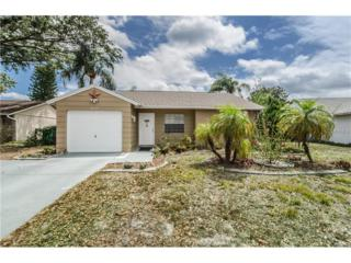 3118 Munson Street, New Port Richey, FL 34655 (MLS #W7629286) :: The Duncan Duo & Associates