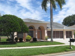 9047 Calle Alta, New Port Richey, FL 34655 (MLS #W7629335) :: The Duncan Duo & Associates