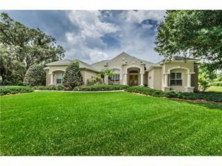 12249 Quail Ridge Drive, Spring Hill, FL 34610 (MLS #W7630282) :: The Duncan Duo & Associates