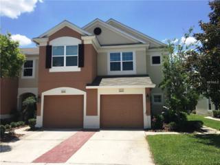 26540 Castleview Way, Wesley Chapel, FL 33544 (MLS #W7630332) :: The Duncan Duo & Associates