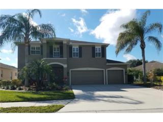 5723 43RD Court E, Bradenton, FL 34203 (MLS #A4177209) :: Medway Realty