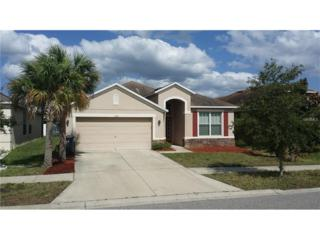 7101 Forest Mere Drive, Riverview, FL 33578 (MLS #A4179274) :: The Duncan Duo & Associates